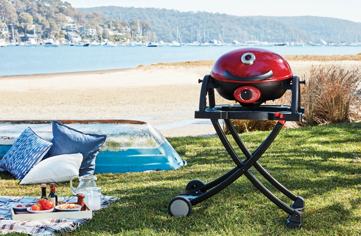 Folding Cart for Portable and Twin Grill 4